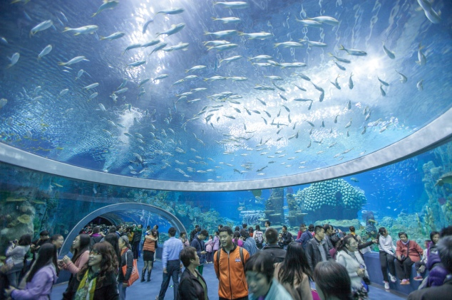 Chimelong Ocean Kingdom (China)